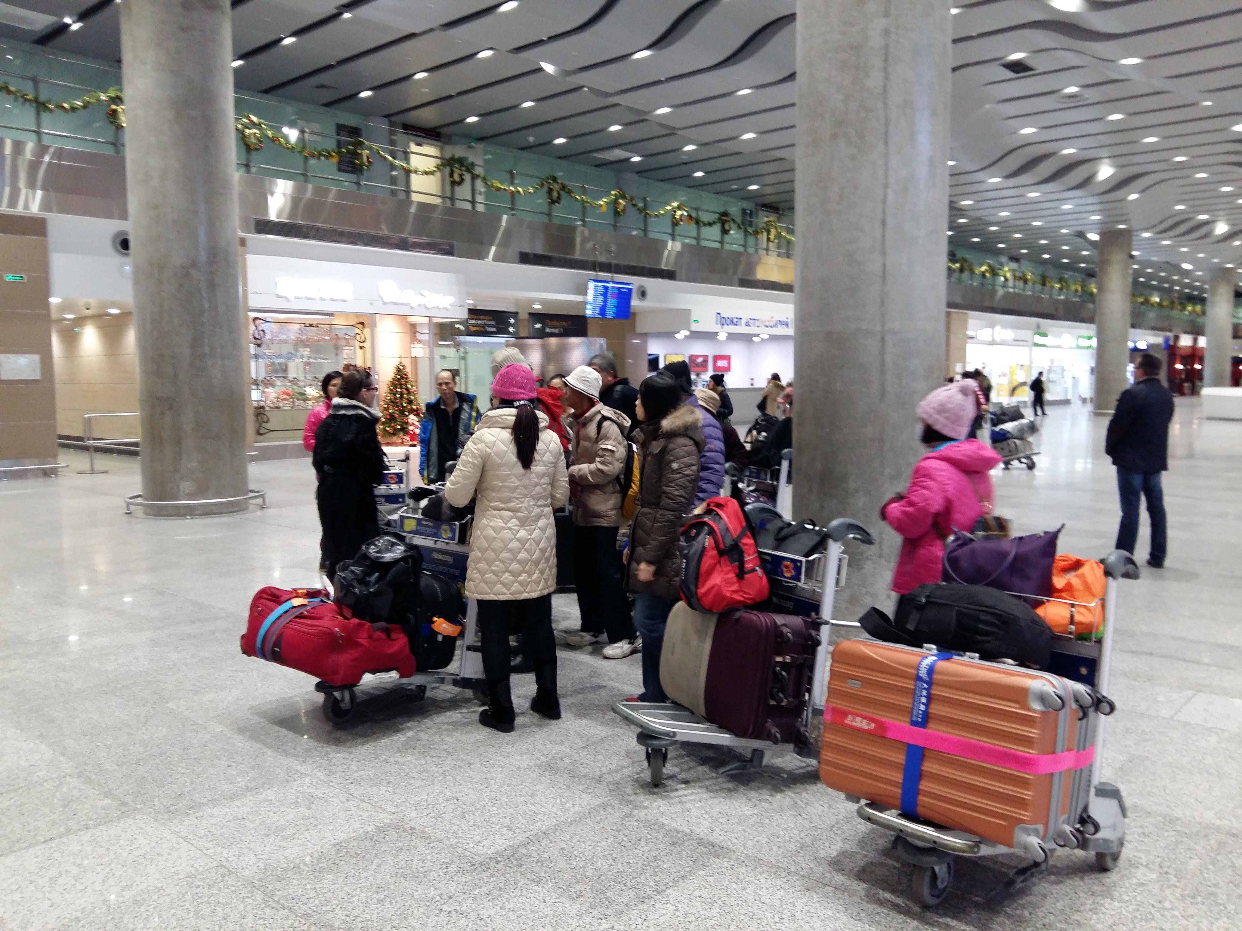 会议中国游客普尔科沃机场